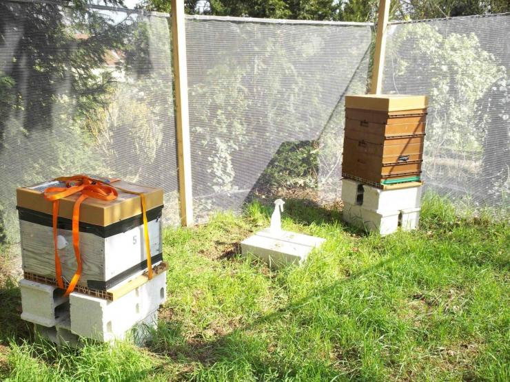 Installation de 2 ruches Au bois fleuri Avon Avril2012