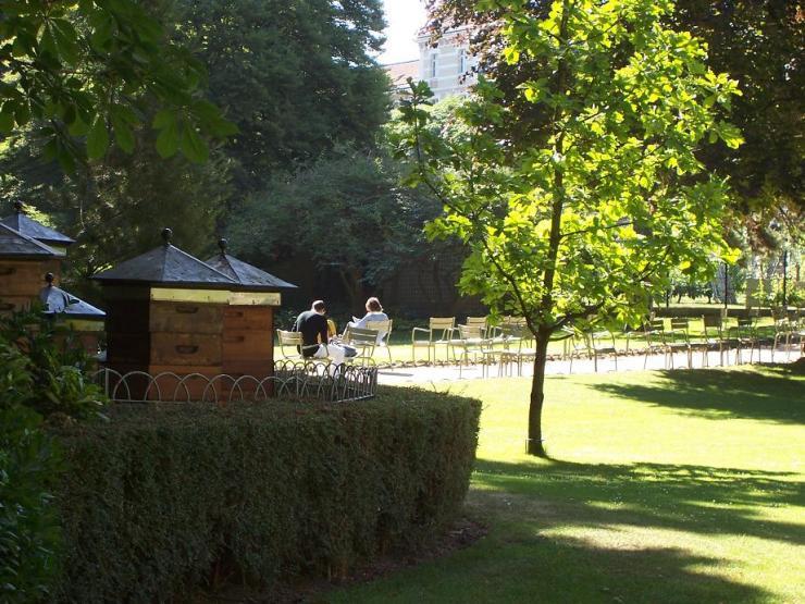 Rucher jardin du luxembourg5